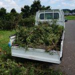 週末の過ごし方、畑仕事の手伝い2016年8月