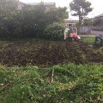 2016年9月3日の週末も畑仕事 草刈り、切り株の廃棄