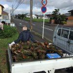 田舎の週末暮らし 切り株のリサイクル 2016/9/18