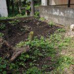 週末家庭菜園、切り株を引っこ抜くがチェーンブロックの木製支柱が折れた