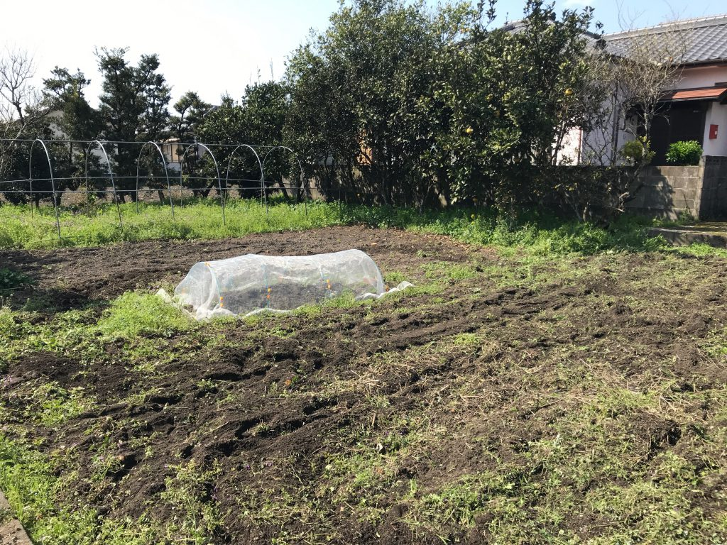 家庭菜園2018年3月25日植える前