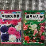 2018年3月18日、家庭菜園、花、種子、ほうせんかと矢車草の種を買った。