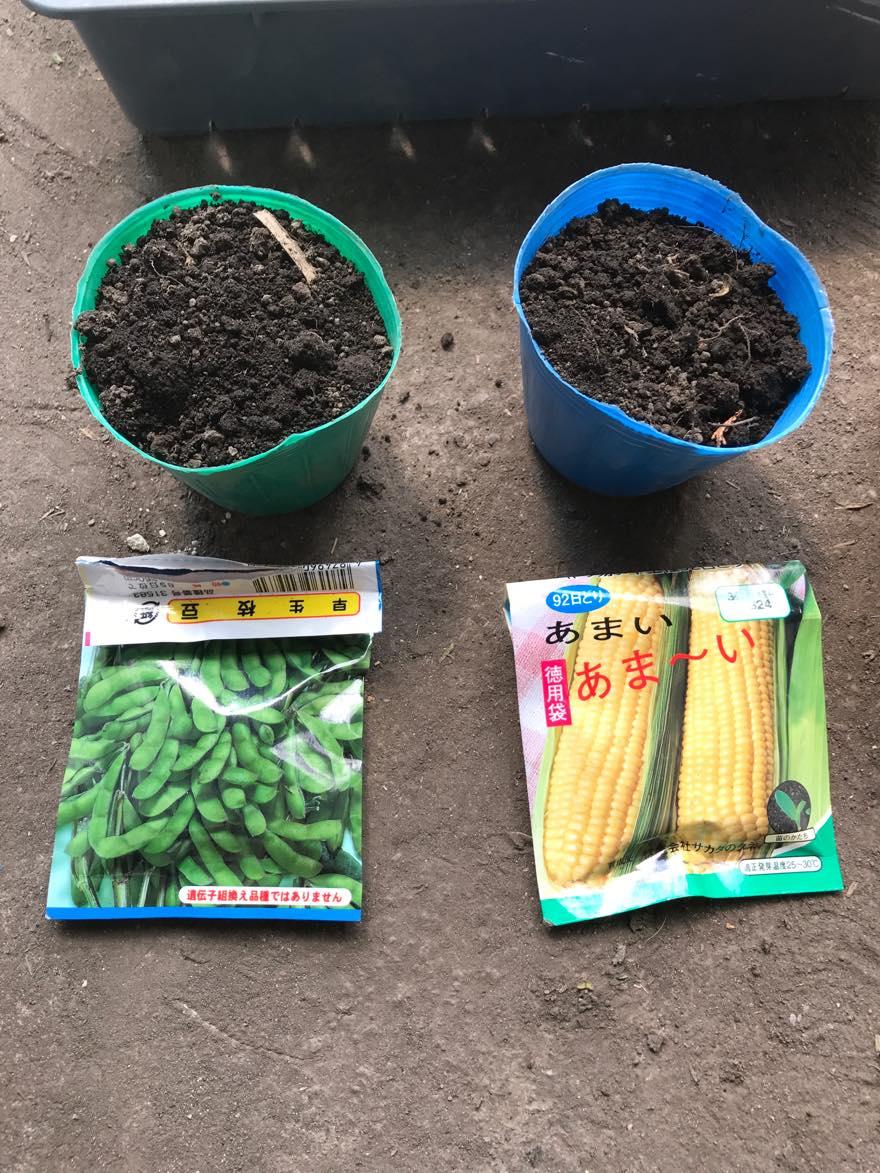 枝豆、コーン