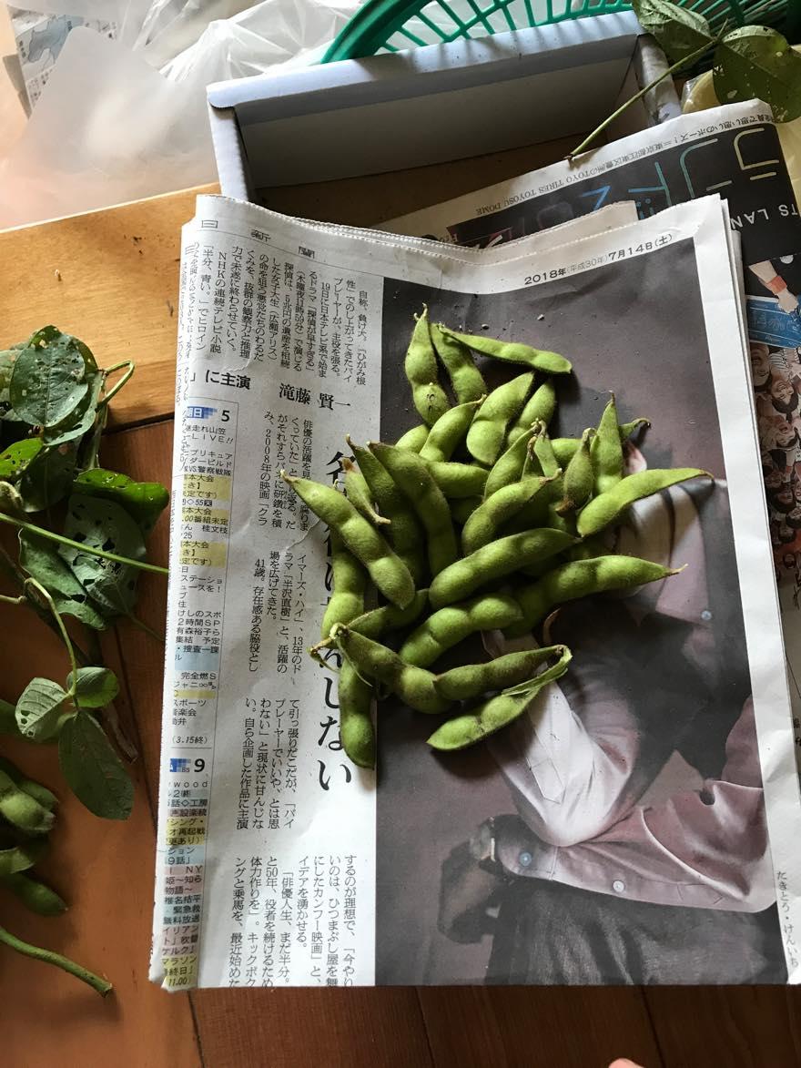 枝豆少ない2