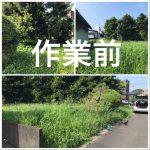 家庭菜園 2018/09/02 植木の草刈り 白菜定植ほうれん草白菜種植え